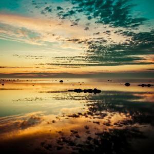 Nature arkiv naturbilder tryckt på glas | jan malmström